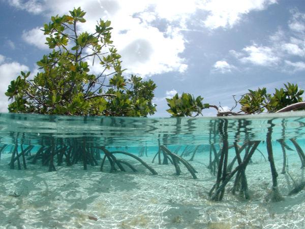 Northwest Point Resort – Turks and Caicos Islands